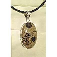 423 Collier agate turritelle, argent sterling
